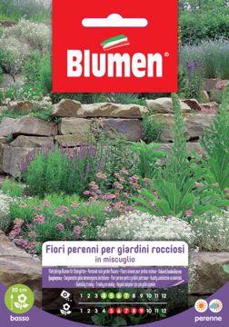Immagine di Confezione semi misti perenni per giardini rocciosi Blumen pianta decorazione